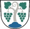 Municipality of Vipava
